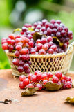 Red grape fruits Stock Photo