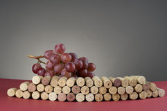 Red grape and group of wine corks Royalty Free Stock Images