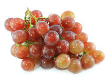 Red grape isolated Royalty Free Stock Photo