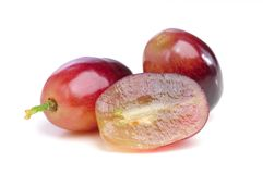 Red grape isolated. Royalty Free Stock Photography