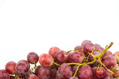Red grape isolated on white Stock Photography