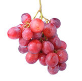 Red grape isolated on white Royalty Free Stock Photos