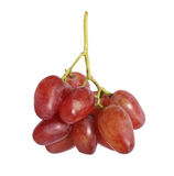 Red grape isolated Royalty Free Stock Image