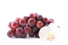 Red grape isolated on white background with a orch Stock Photos