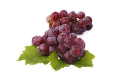 Red grape with leaf isolated on white background Royalty Free Stock Image