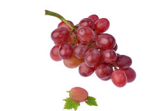 Red grape with leaf isolated on white background Royalty Free Stock Photo