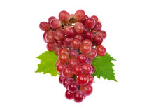 Red grape with leaf isolated on white background Stock Image