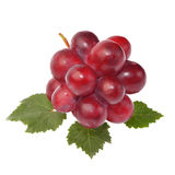 Red grape with leaf isolated on white background Royalty Free Stock Photography