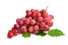 Red grape with leaf isolated on white background Stock Photos