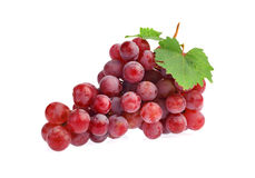 Red grape with leaf isolated on white background Stock Photography