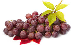 Red grape with leaf  on white. Royalty Free Stock Photos
