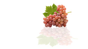 Red grape and leaves with copyspace isolated on white background Royalty Free Stock Photos