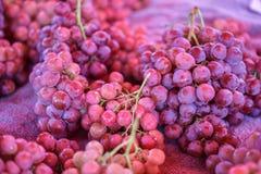 Red Grape in market. Fresh red grape in market Stock Photo