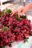 Red grape sale in local market Stock Images