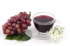 Red Grape (Vitis vinifera L.) Stock Images