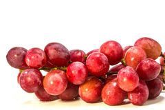 Red grape with water drops Stock Photography