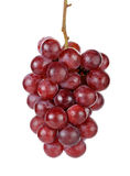 Red grape  on the white background Royalty Free Stock Photos