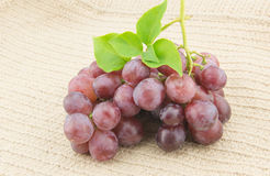 Red grape on white background Royalty Free Stock Photography