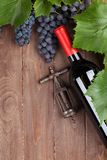 Red grape, wine bottle and corkscrew Stock Photos