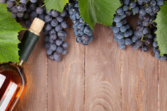 Red grape and wine bottle Royalty Free Stock Photo