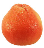 Red grapefruit. Close up of a fresh red grapefruit on white background stock photos