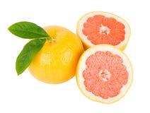 Red Grapefruit Royalty Free Stock Photo