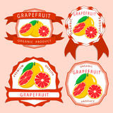 The red grapefruit. Abstract vector illustration logo for whole ripe fruit orange grapefruit citrus cut sliced.Grapefruit drawing consisting of tag label bow Stock Photo
