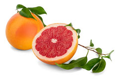 Red Grapefruit Royalty Free Stock Photo