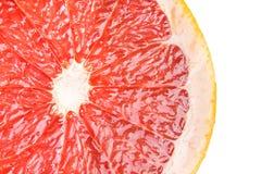 Red grapefruit slice. Royalty Free Stock Photos