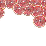 Red Grapefruit on top. Red Grapefruit illustration watercolor paint Royalty Free Stock Image