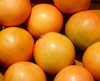 Red grapefruits Stock Photography