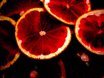 Red grapefruits Royalty Free Stock Images
