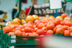 Red grapefruits in boxes in supermarket Royalty Free Stock Photos