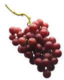 Red grapes. Fresh red grapes on white background Royalty Free Stock Images