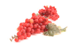 Red Grapes. A shot of some red grapes royalty free stock photos