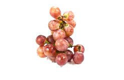 Red grapes. Stock Photography
