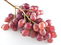 Red grapes. Fresh red grapes isolated on white background Royalty Free Stock Photo