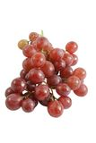 Red Grapes. Isolated bunch of red grapes Stock Image