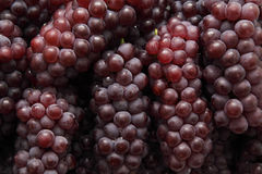 Red grapes background Royalty Free Stock Photo