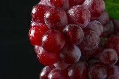 Red Grapes on black acrylic Royalty Free Stock Photo