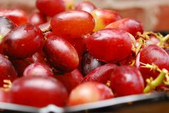 Red Grapes Stock Photography