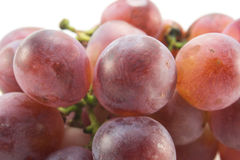 Red grapes. Bunch red grapes macro, red grapes close-up Royalty Free Stock Images