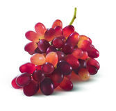 Red grapes bunch no leaf isolated on white background. As package design element Stock Image