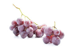 Red grapes bunch nutrition juicy fruit Stock Images
