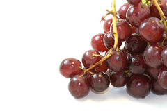 Red Grapes Bunch on White Background. A bunch of wet red grapes on a white background Stock Photography