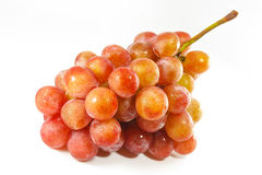 Red Grapes Bunch. In White Background Royalty Free Stock Photo