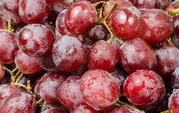 Red grapes close up Royalty Free Stock Image