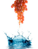 Red grapes with drops. Stock Photo