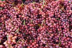 Red grapes. Fruit commonly eaten in Thailand Royalty Free Stock Photography