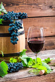 Red grapes and a glass of red wine. On old wooden table Royalty Free Stock Image
